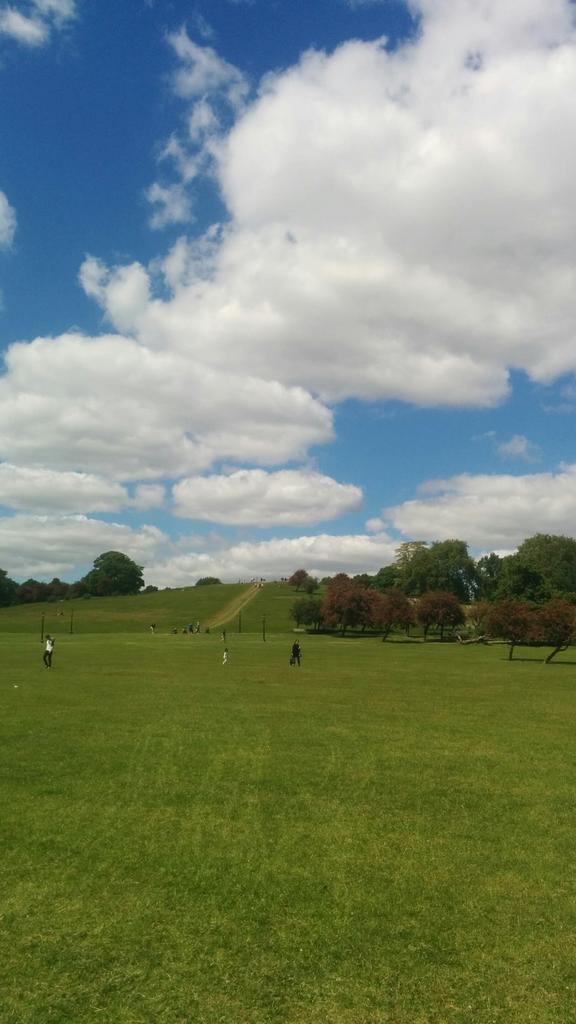 Primrose hill 2