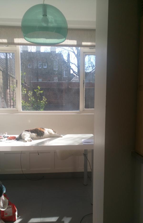 sun bathing 3
