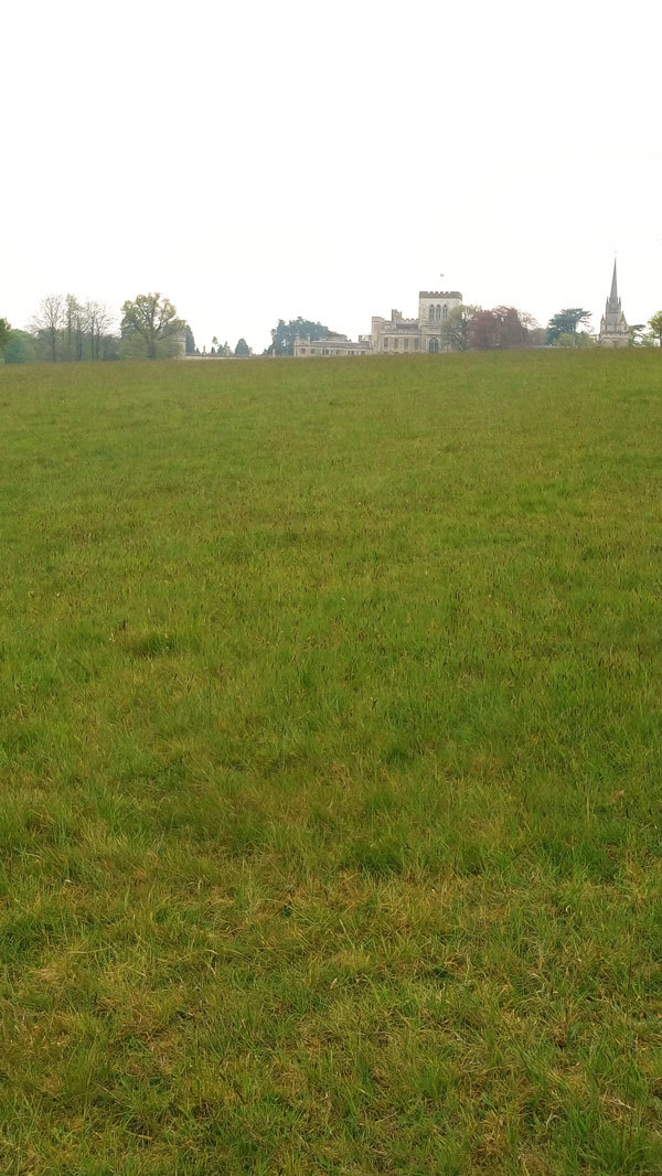 Ashridge walk 5