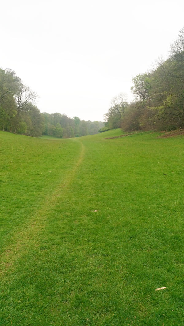 Ashridge walk 7